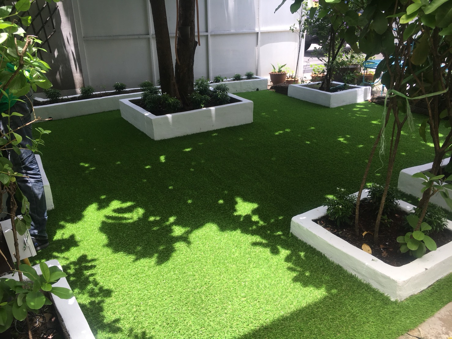 Greenygroup